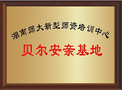 湖南师大新型师资培训基地